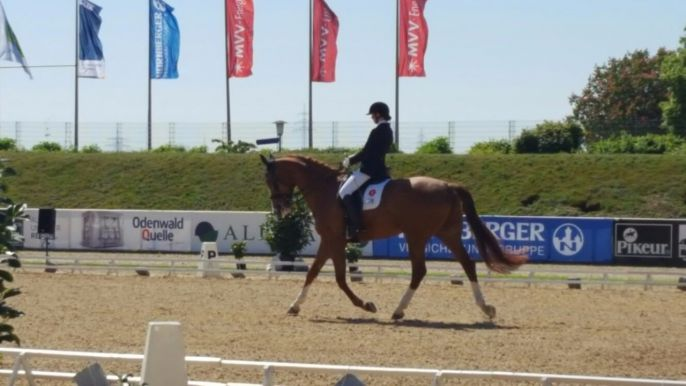 Internationales Para-Equestrian-Turnier in Mannheim